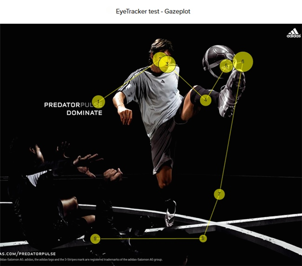 eye tracking test - gazeplot
